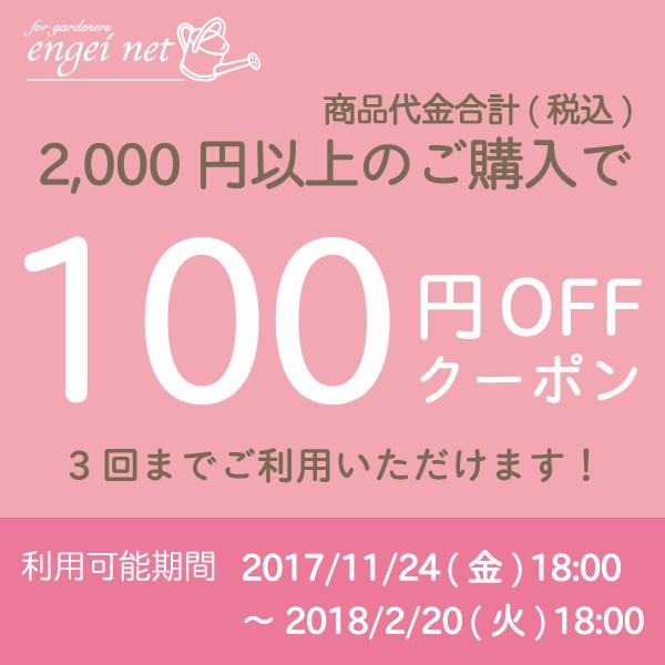 3回使える★商品代金合計2,000円以上ご購入で100円OFF!【園芸ネット】