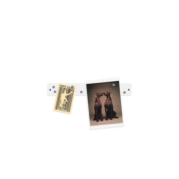 マグネットボード おしゃれな 壁掛け マグネット ストリップ ショート 送料無料 壁 収納 新生活 応援 グッズ 5cm×35.5cm 100g|enitusa|09