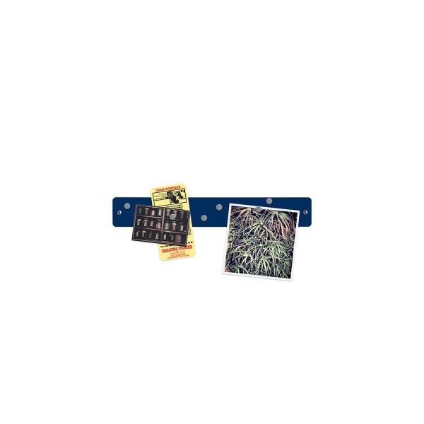 マグネットボード おしゃれな 壁掛け マグネット ストリップ ショート 送料無料 壁 収納 新生活 応援 グッズ 5cm×35.5cm 100g|enitusa|12