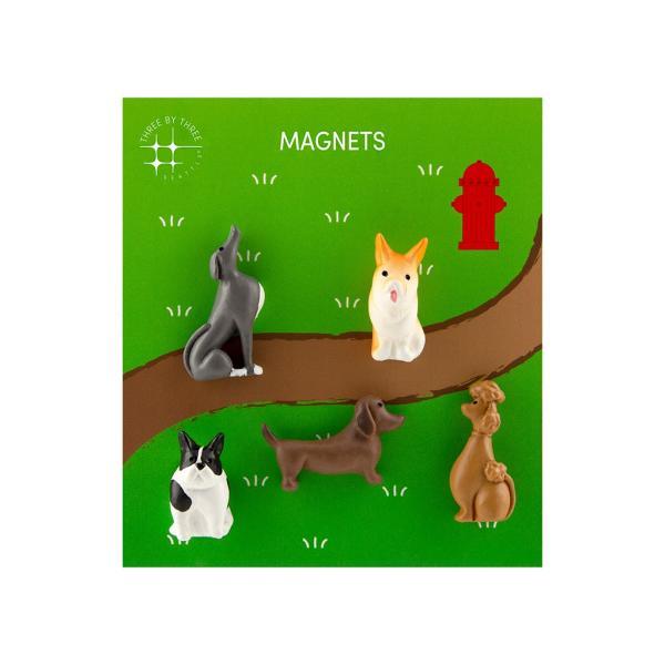 かわいい 磁石 ネオジム アニマル マグネット イヌ ネコ ハリネズミ ウサギ テントウムシ アヒル|enitusa|15