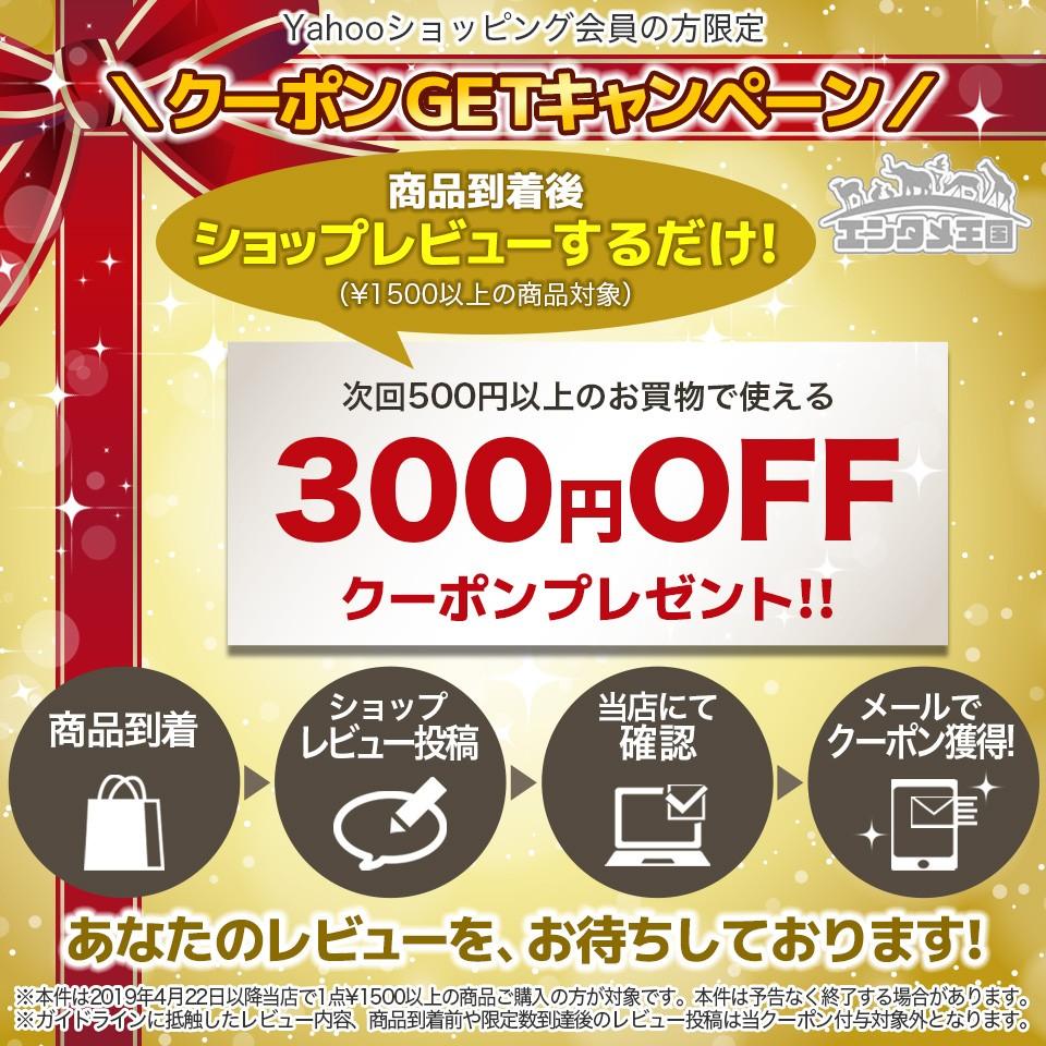 ショップレビュー投稿で300円クーポンプレゼント