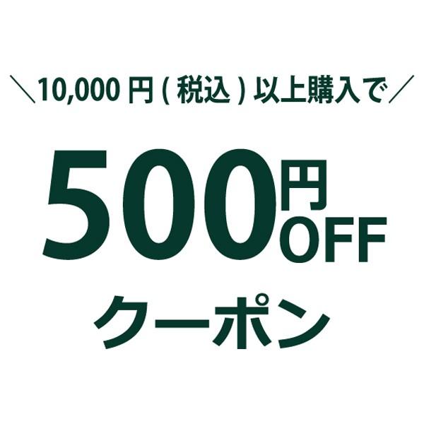 (春を先取りセール)全品対象500円OFFクーポン