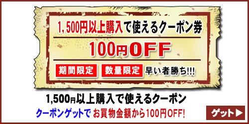 【100円OFF☆特別クーポン】買えば買うほどお得なクーポン!《数量限定・期間限定》
