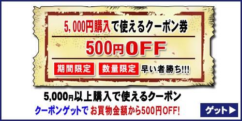 【500円OFF☆特別クーポン】買えば買うほどお得なクーポン!《数量限定・期間限定》