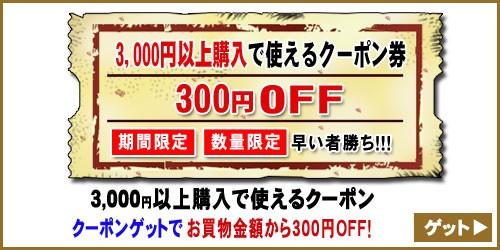 【300円OFF☆特別クーポン】買えば買うほどお得なクーポン!《数量限定・期間限定》