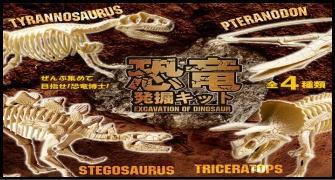 恐竜発掘キット