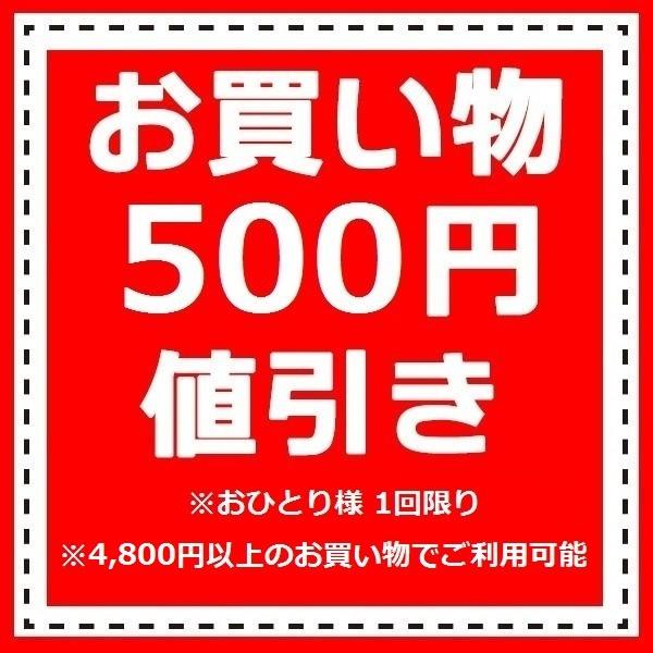 500円値引きクーポン