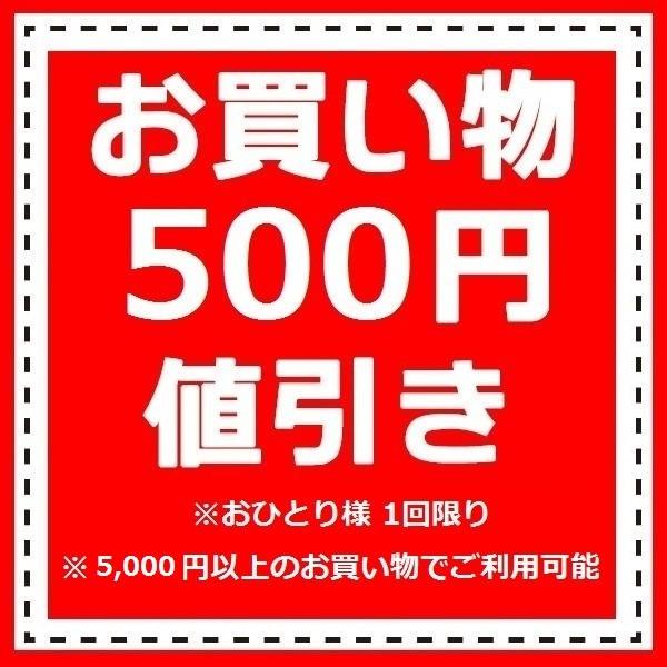 500円オフ!値引きクーポン。