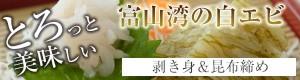 ギフト!富山のアジ★白エビの昆布締めとむき身のセット