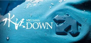 水沢DOWN