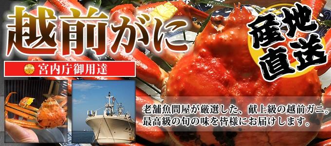 宮内庁御用達。田島魚問屋の献上級越前ガニ