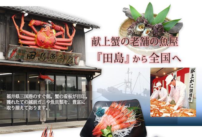 田島魚問屋 お食事処田島