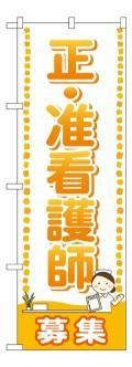 正・准看護師 募集 GNB-2519