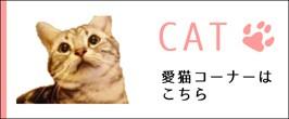 愛猫コーナー