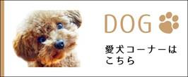 愛犬コーナー
