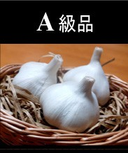 Aomori (青森産にんにく)A級品