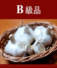 Aomori (青森産にんにく) B級品
