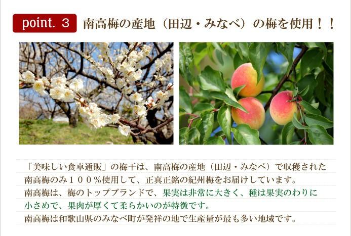 紀州南高梅 蜂蜜漬け 田辺、みなべの梅使用