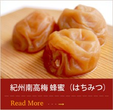 紀州南高梅 蜂蜜(はちみつ)