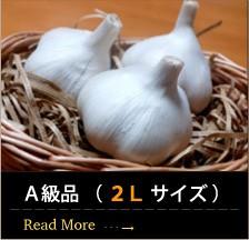 青森産にんにくA級品 ( 2L サイズ )