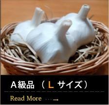 青森産にんにくA級品 ( L サイズ )