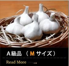 青森産にんにくA級品 ( M サイズ )