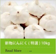 九州産新物にんにく ( 特選 ) 10kg