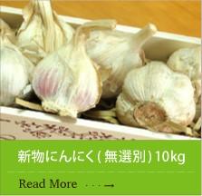 九州産新物にんにく ( 無選別 ) 10kg