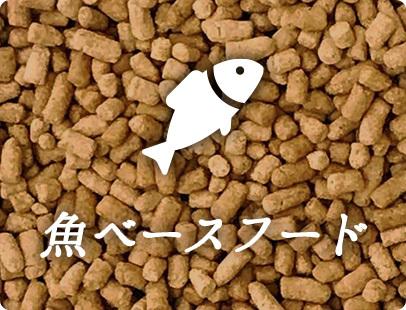 魚(鮭)ベースフード