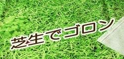 芝生でゴロン