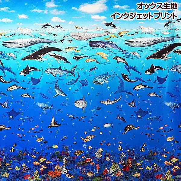 オックス生地 海の動物
