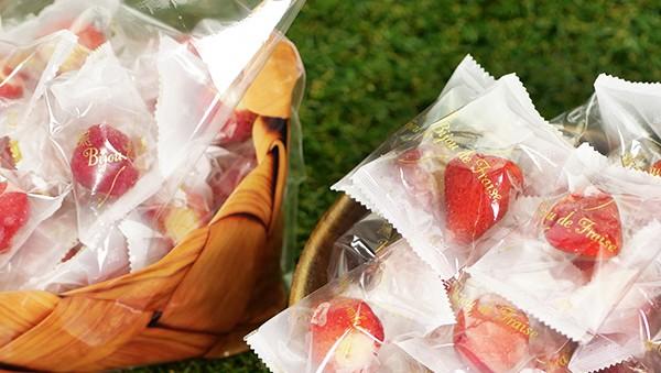 アイスクリーム ギフト 送料無料 春摘み苺アイス