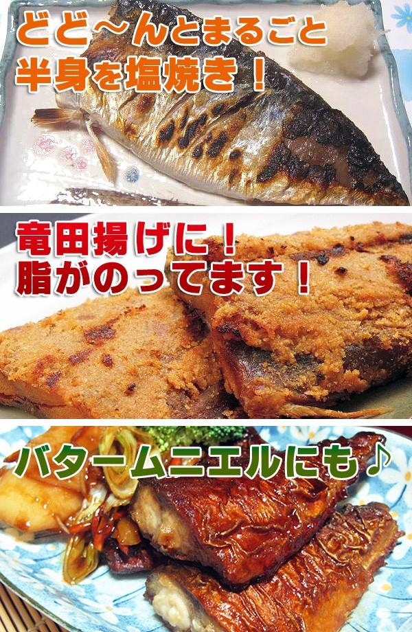 さば サバ 鯖