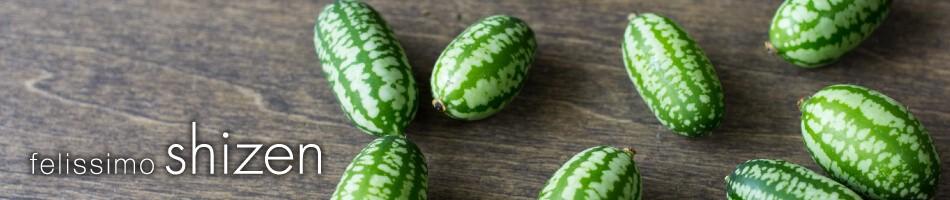 自然栽培・有機栽培の野菜・加工品専門