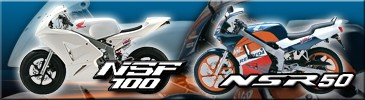 NSR50/NSF100