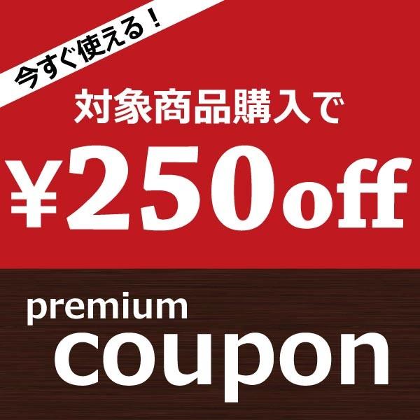 今すぐ使える250円クーポン♪