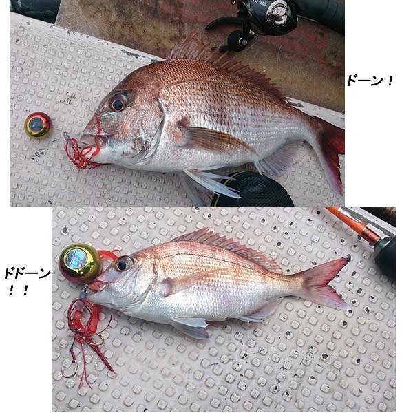 タイラバ釣果