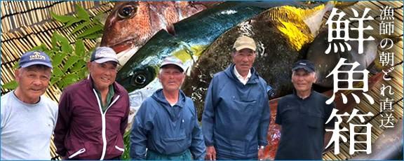 鮮魚セット 気仙沼 漁師直送 お取り寄せ 通販