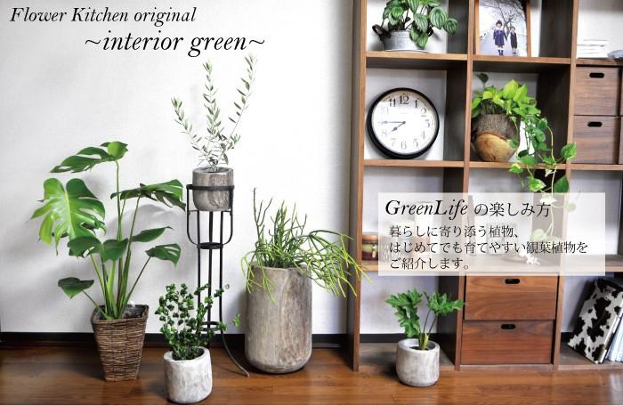 グリーンのある暮らし