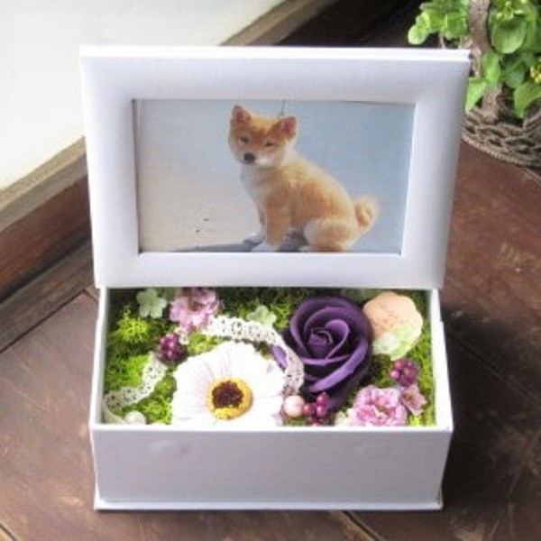 15種類から選べる フラワーフォトボックスorフレーム 写真立て 額 花 fkjiyugaoka 21