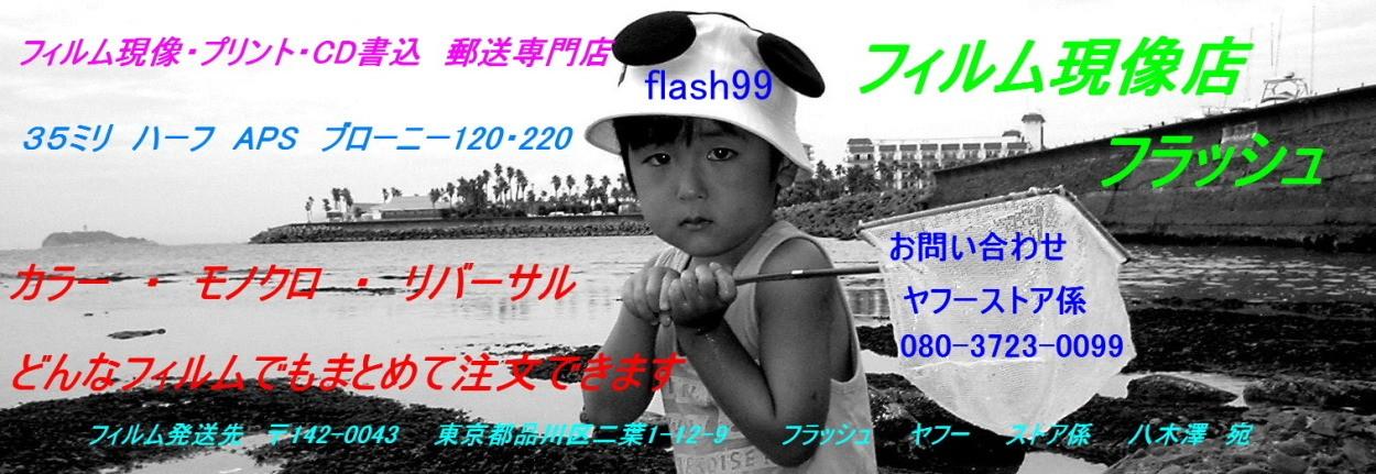 フィルム現像 専門店 株式会社 フラッシュ