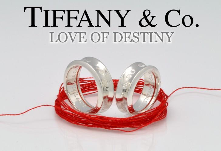 TIFFANY&Co.(ティファニー) LOVE OF DESTENY〜運命の赤い糸〜