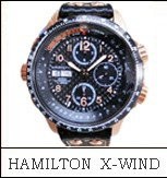 HAMILTON H77696793