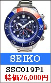 セイコーSRK028P1