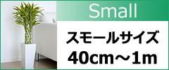 観葉植物スモールサイズ