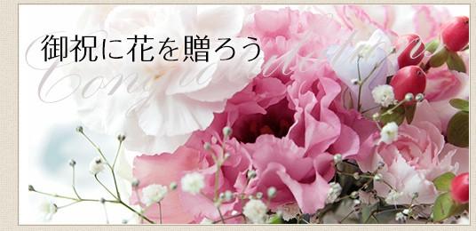 特集(お礼)