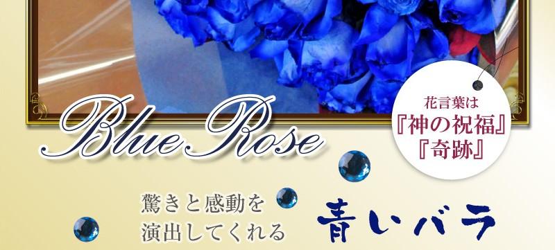 花言葉な「神の祝福」「奇跡」驚きと感動を演出してくれる青いバラ(ばら、薔薇)Blue Rose