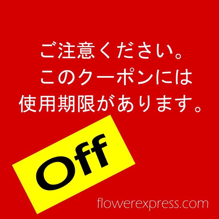 ひな祭りのアレンジメントが¥250引き