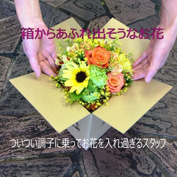 flower_out_of_box