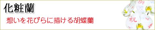 化粧蘭 取り扱い商品一覧ページへ